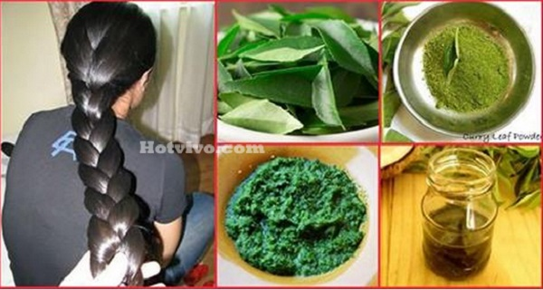How-To-Use-Curry-Leaves-For-Hair-Growth
