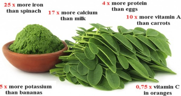 Breaking Study This Green Herb Could Be The Cure to 5 Different Types of Cancer Including Ovarian, Liver, Lung, and Melanoma