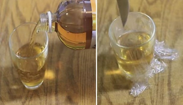 Pour Some Apple Cider Vinegar Into a Small Bowl and Set It In Your House. The Reason Genius!