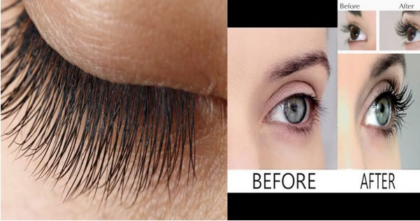 How To Grow Thicker Eye Lashes Home Remedies