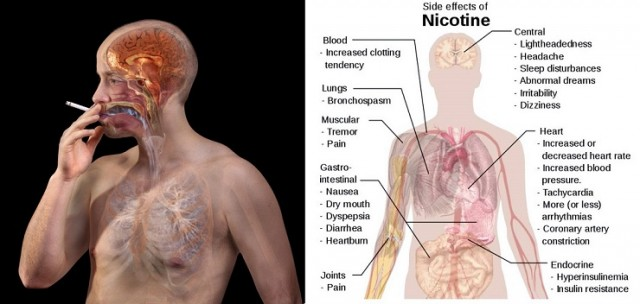attention-smokers-these-foods-will-flush-out-nicotine-from-your-body